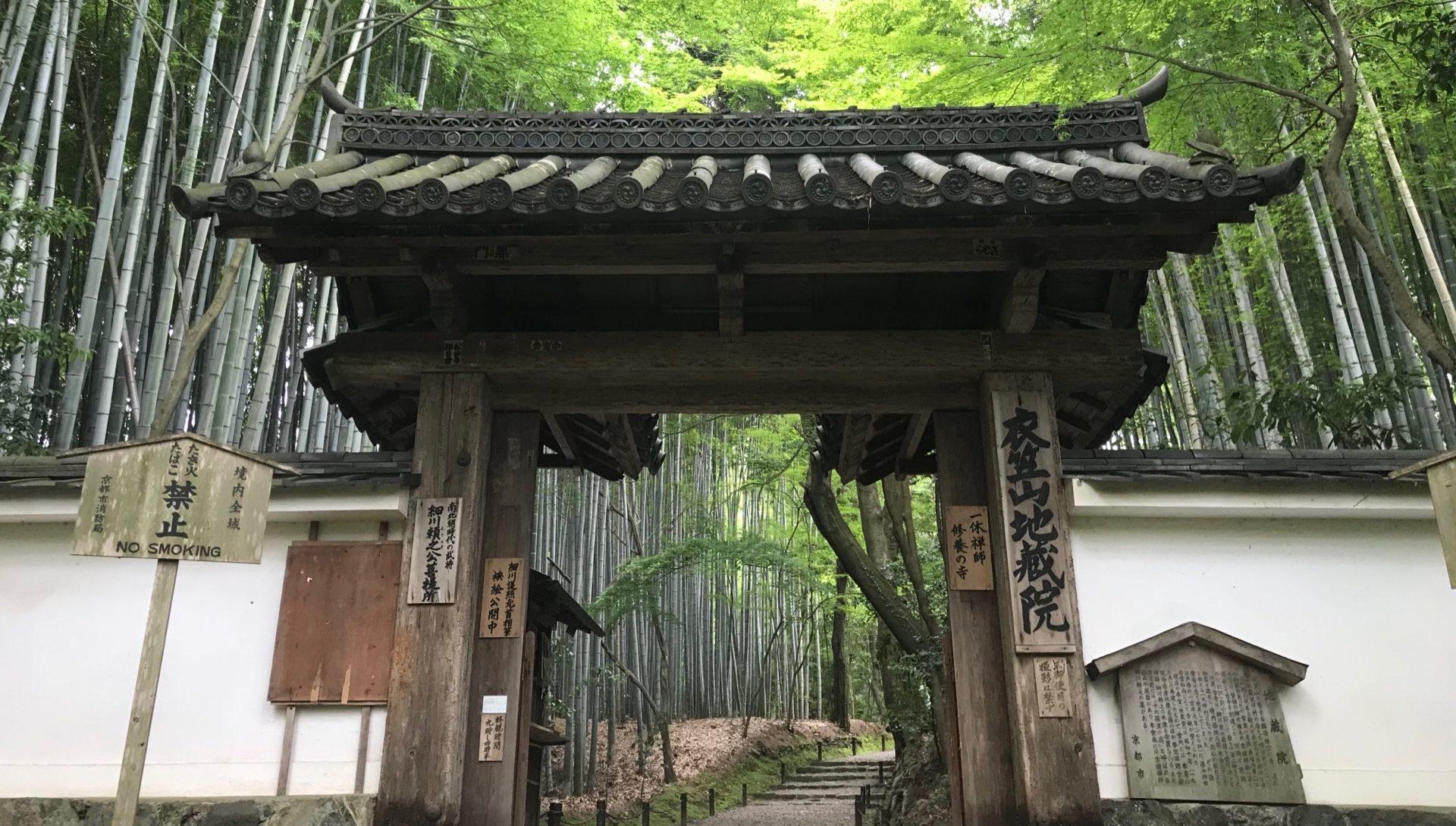 生い茂る竹が魅力!【竹の寺 地蔵院】
